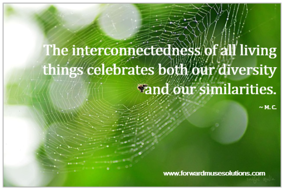 Interconnectedness (MEME)