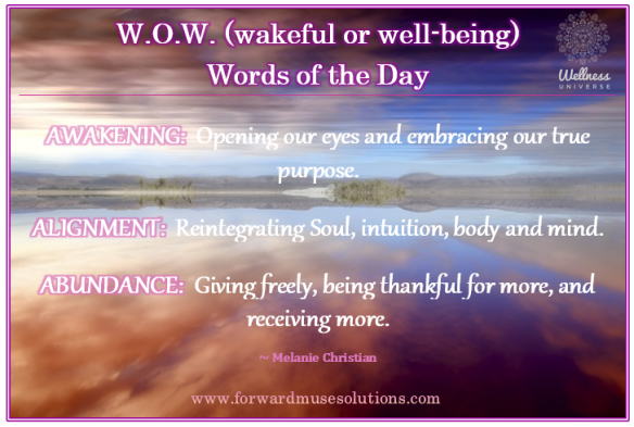 wow-words-awakening-fms-meme
